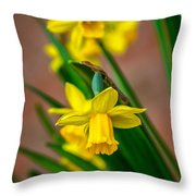 The Gentleness Of Spring Throw Pillow