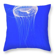 The Ghost In The Water Throw Pillow