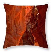The Giant Room Throw Pillow