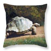 The Giant Tortoise Is Walking Throw Pillow
