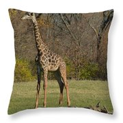 The Giraffe Throw Pillow