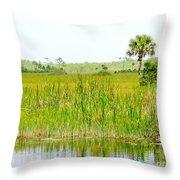 The Glades Throw Pillow