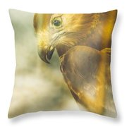 The Glass Case Eagle Throw Pillow