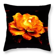 The Glow Of Amber.... Throw Pillow