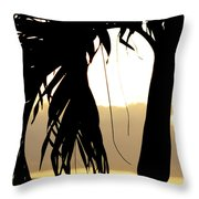 The Glow Of Maui Throw Pillow