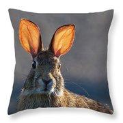 Golden Ears Bunny Throw Pillow
