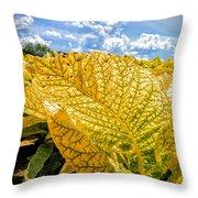The Golden Leaf Throw Pillow
