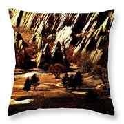 The Golden Years Throw Pillow