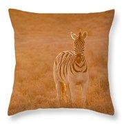 The Golden Zebra Throw Pillow