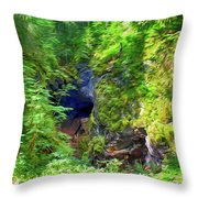 The Gorge In The Wood Throw Pillow