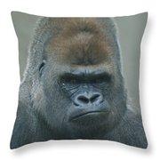 The Gorilla 4 Throw Pillow