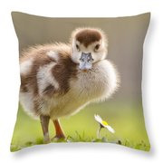 The Gosling And The Flower Throw Pillow