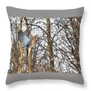 The Graceful Mourning Dove In-flight Throw Pillow