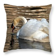 The Graceful Swan  Throw Pillow