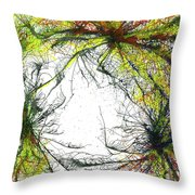 The Grand Symphony Of The Universe #635 Throw Pillow