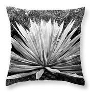 The Great Agave Throw Pillow