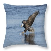 The Great American Bald Eagle 2016-8 Throw Pillow