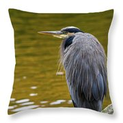 The Great Blue Heron Perched On A Tree Branch Throw Pillow