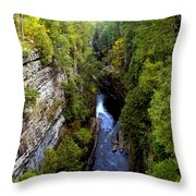 The Great Chasm Throw Pillow