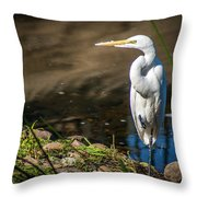 The Great Egret Throw Pillow