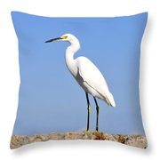 The Great Snowy Egret Throw Pillow