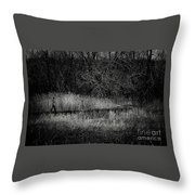 The Greatest Source Of Happiness Throw Pillow