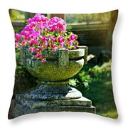 The Grecian Urn Throw Pillow