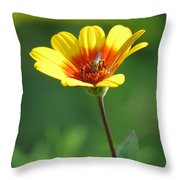 The Green Bug Throw Pillow