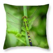 The Green Dragon Throw Pillow
