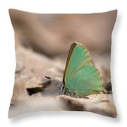 The Green Hairstreak Throw Pillow