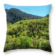 The Greening Of Spring Throw Pillow