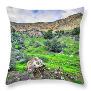 The Greening Of The Las Llajas Trail  Throw Pillow