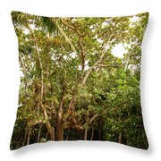 The Greeter Throw Pillow