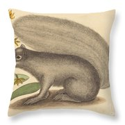 The Grey Fox Squirrel (sciurus Cinereus) Throw Pillow