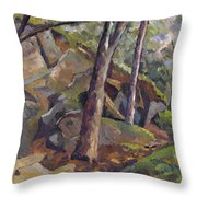 The Grotto Throw Pillow by Don Perino