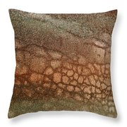 The Ground At My Feet Throw Pillow