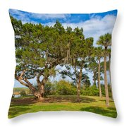 The Grounds Of The Kingsley Plantation Throw Pillow