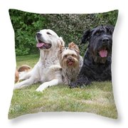 The Group Of Dogs Throw Pillow