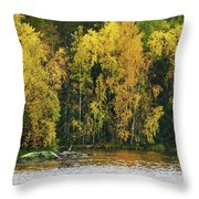 The Guard Of The Island Throw Pillow