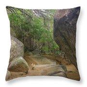The Guide To The Bath Virgin Gorda Island Throw Pillow