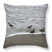 The Gulf In Shades Of Gray - One Opposed Throw Pillow