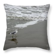 The Gulf In Shades Of Gray - Strutting Throw Pillow