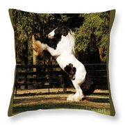 The Gypsy King Throw Pillow