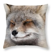 The Handsome Cross Fox Male Throw Pillow