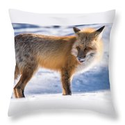 The Handsome Hunter Throw Pillow