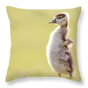 The Happy Chick - Happy Easter Throw Pillow