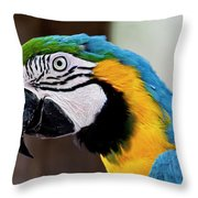 The Happy Macaw Throw Pillow