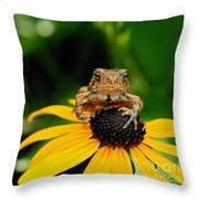The Harbinger Throw Pillow