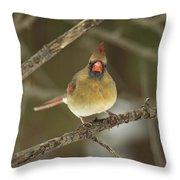 The Haridan - Northern Cardinal - Cardinalis Cardinalis  Throw Pillow