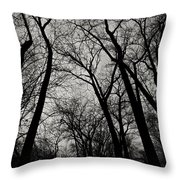 The Haunt Of Winter Throw Pillow